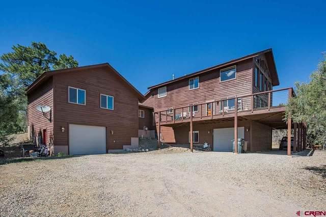 199 Logging Trail Road, Durango, CO 81303 (MLS #782137) :: Durango Mountain Realty