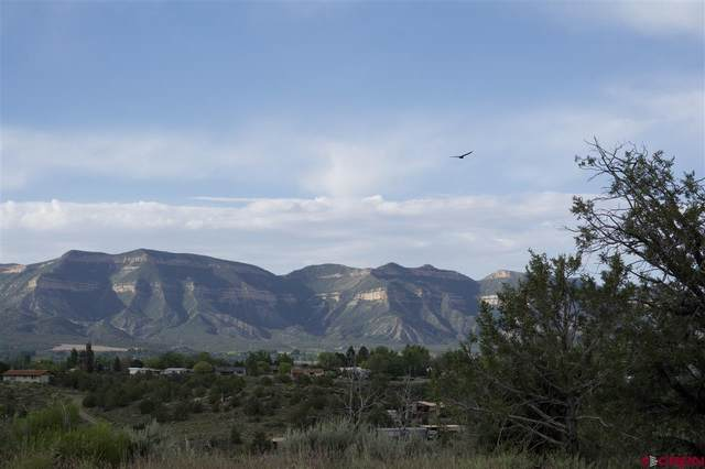 TBD Lot 2 Road 24.3, Cortez, CO 81321 (MLS #782171) :: The Howe Group | Keller Williams Colorado West Realty