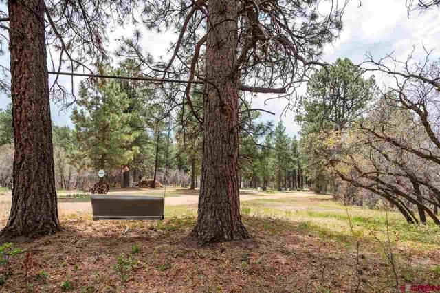 20558 Highway 140, Hesperus, CO 81326 (MLS #782198) :: Durango Mountain Realty
