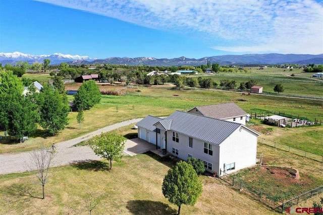 90 Florida Meadows Court, Durango, CO 81303 (MLS #782295) :: Durango Mountain Realty