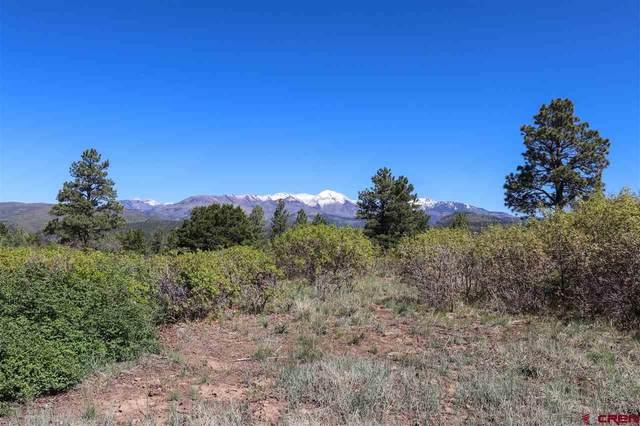 175 Castle Ridge Drive, Durango, CO 81303 (MLS #782342) :: Durango Mountain Realty