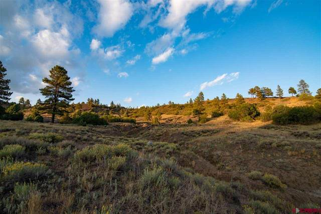 633 E Mccabe Street, Pagosa Springs, CO 81147 (MLS #782369) :: The Howe Group   Keller Williams Colorado West Realty