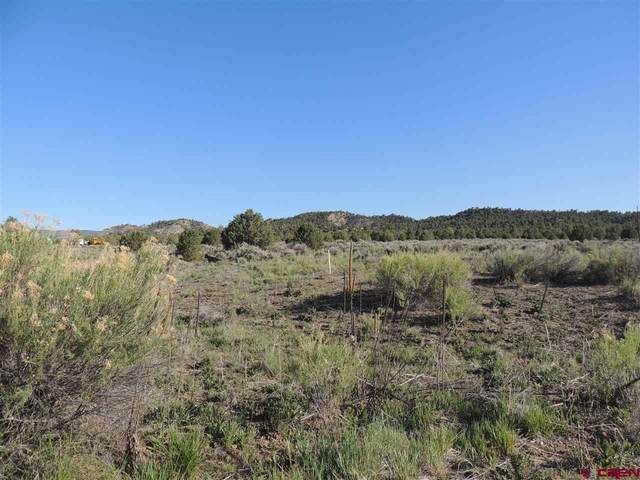 580 Green Shadows Road, Durango, CO 81303 (MLS #782513) :: Durango Mountain Realty