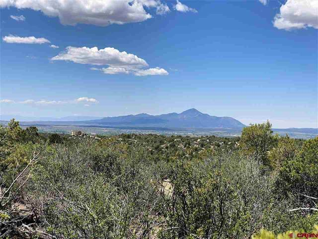TBD Lot 2 Road 28.8, Dolores, CO 81328 (MLS #782547) :: The Howe Group | Keller Williams Colorado West Realty