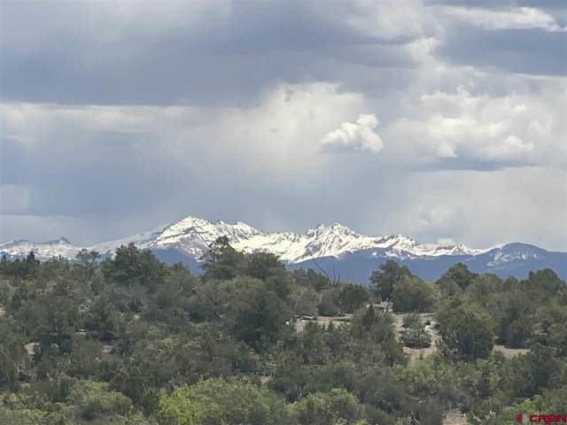 TBD Lot 4 Road 28.8, Dolores, CO 81323 (MLS #782548) :: The Howe Group | Keller Williams Colorado West Realty