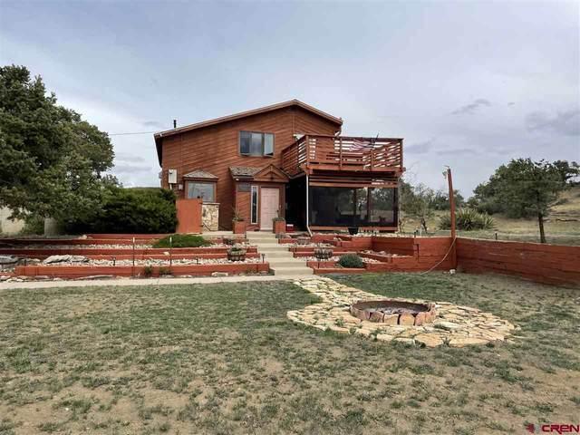1862 County Road 223, Durango, CO 81301 (MLS #782589) :: Durango Mountain Realty