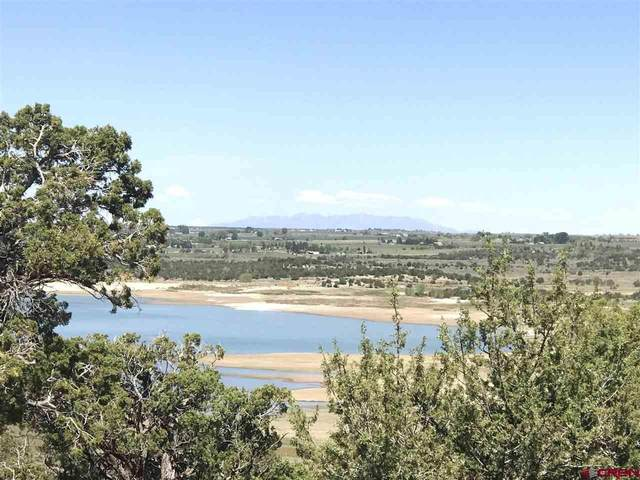 TBD Road V.4 Lot 42, Dolores, CO 81323 (MLS #782648) :: The Howe Group | Keller Williams Colorado West Realty