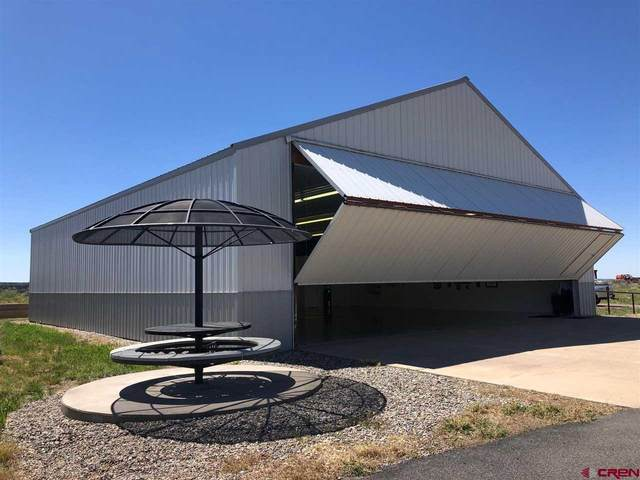 35 N Skylane Drive, Durango, CO 81303 (MLS #782689) :: Durango Mountain Realty