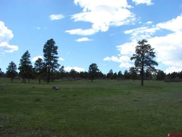 X Wildcat Circle Lot 34, Pagosa Springs, CO 81147 (MLS #782697) :: The Howe Group | Keller Williams Colorado West Realty