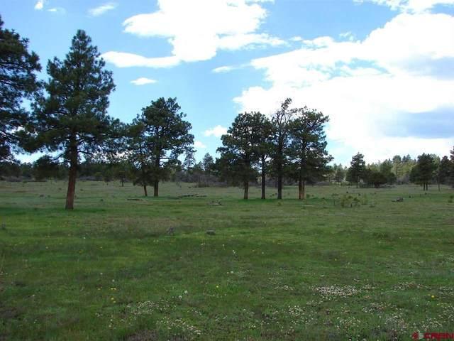 X Wildcat Circle Lot 35, Pagosa Springs, CO 81147 (MLS #782698) :: The Howe Group | Keller Williams Colorado West Realty