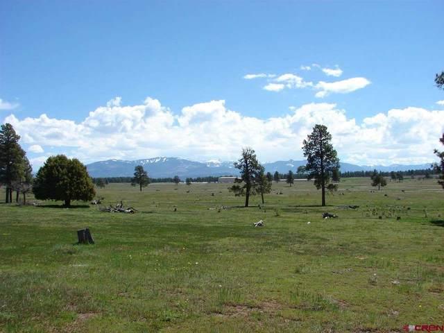 X Industrial Circle Lot 38, Pagosa Springs, CO 81147 (MLS #782699) :: The Howe Group | Keller Williams Colorado West Realty