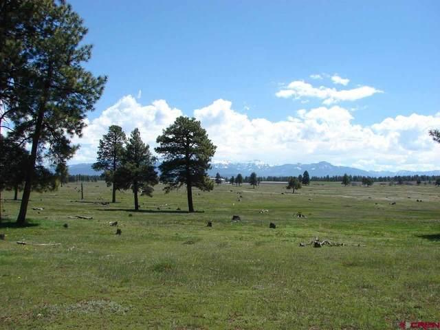 X Industrial Circle Lot 39, Pagosa Springs, CO 81147 (MLS #782700) :: The Howe Group | Keller Williams Colorado West Realty