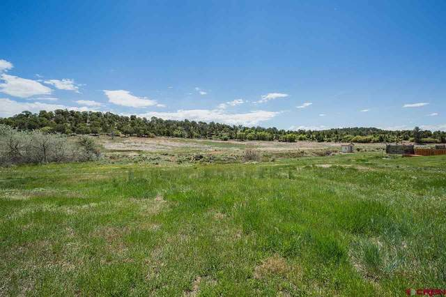 29 Nature Trail Court, Bayfield, CO 81122 (MLS #782811) :: The Howe Group | Keller Williams Colorado West Realty