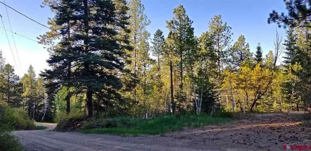 TBD Sunny Lane, Durango, CO 81301 (MLS #782886) :: Durango Mountain Realty