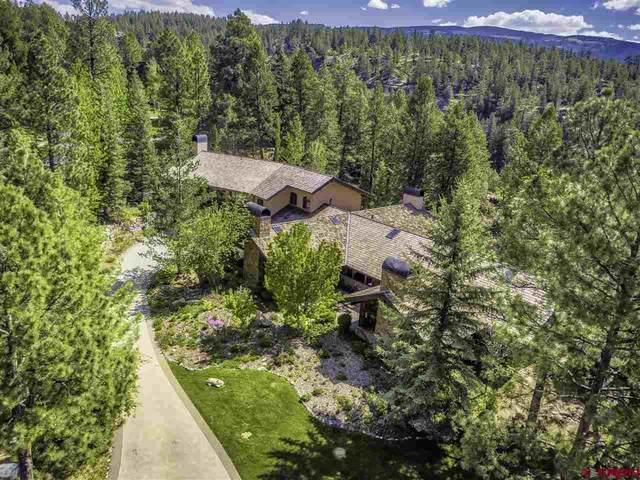 43 Peregrine Drive, Durango, CO 81301 (MLS #782903) :: Berkshire Hathaway HomeServices Western Colorado Properties