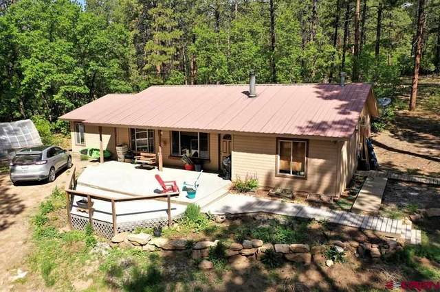 1431 Nusbaum Road, Durango, CO 81301 (MLS #782918) :: Durango Mountain Realty