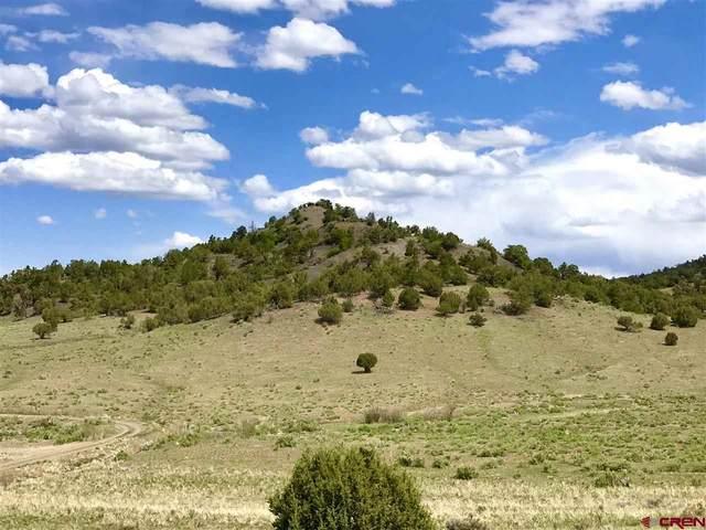 TBD Road 24.7  Lot B, Cortez, CO 81321 (MLS #782921) :: Dawn Howe Group | Keller Williams Colorado West Realty