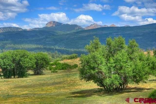 8350 Raod 46, Mancos, CO 81328 (MLS #782979) :: The Howe Group   Keller Williams Colorado West Realty