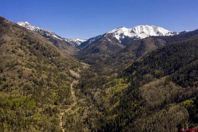 8580 Cr 124, Hesperus, CO 81326 (MLS #782994) :: Durango Mountain Realty