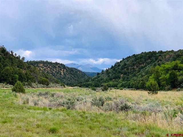 TBD De Oro Way, Hesperus, CO 81326 (MLS #783002) :: Durango Mountain Realty