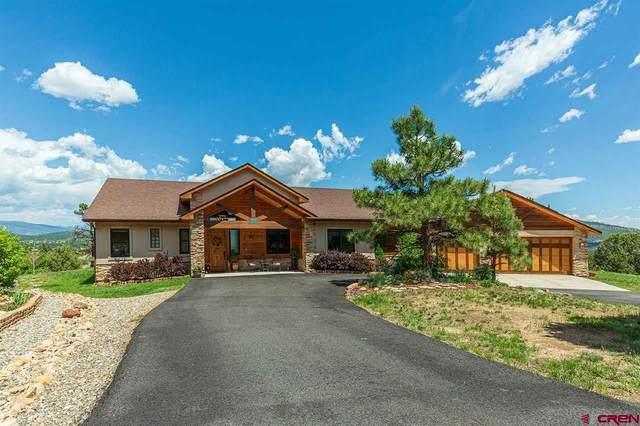 500 Ute Junction Circle, Durango, CO 81303 (MLS #783032) :: Durango Mountain Realty