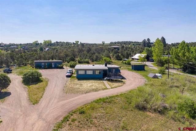 195 Silverview Lane, Durango, CO 81303 (MLS #783118) :: Durango Mountain Realty
