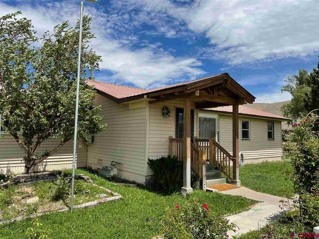 64411 Oneil Trail, Montrose, CO 81401 (MLS #783127) :: The Dawn Howe Group | Keller Williams Colorado West Realty