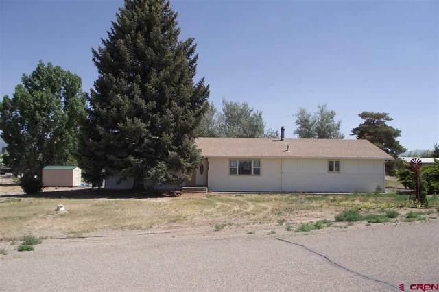 10627 Mesa View Drive, Austin, CO 81410 (MLS #783137) :: The Dawn Howe Group | Keller Williams Colorado West Realty