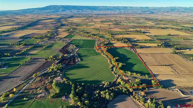 56752 E20 Road, Olathe, CO 81425 (MLS #783157) :: The Dawn Howe Group | Keller Williams Colorado West Realty