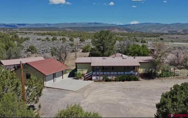 26313 Cedar Mesa Road, Cedaredge, CO 81413 (MLS #783162) :: The Dawn Howe Group | Keller Williams Colorado West Realty