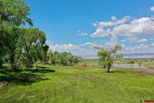 TBD Highway 90, Montrose, CO 81403 (MLS #783199) :: The Dawn Howe Group | Keller Williams Colorado West Realty