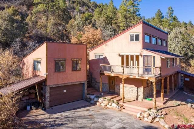 5063 Cr 203, Durango, CO 81301 (MLS #783201) :: Durango Mountain Realty