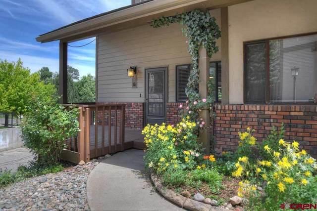131 E 33rd Street #6, Durango, CO 81301 (MLS #783214) :: Durango Mountain Realty