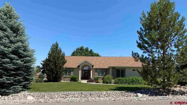 3200 Monte Vista Circle, Montrose, CO 81401 (MLS #783217) :: The Dawn Howe Group | Keller Williams Colorado West Realty