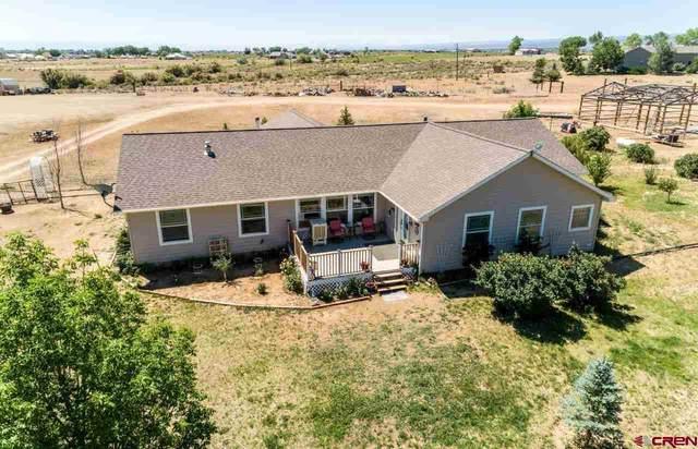 12660 25 Mesa Road, Delta, CO 81416 (MLS #783310) :: The Howe Group   Keller Williams Colorado West Realty