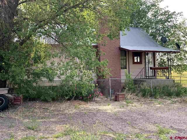 19414 Hwy 491, Lewis, CO 81327 (MLS #783370) :: Dawn Howe Group   Keller Williams Colorado West Realty