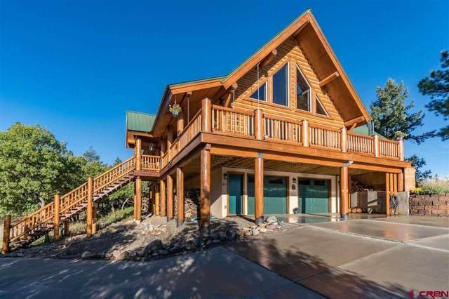 1146 Bristlecone Drive, Pagosa Springs, CO 81147 (MLS #783626) :: The Howe Group | Keller Williams Colorado West Realty