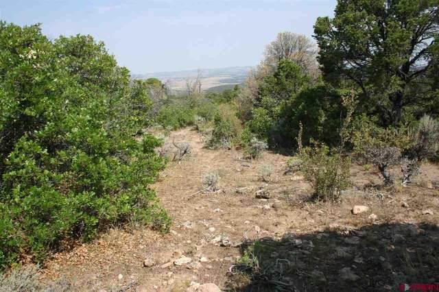 6001 Elk Ranch Road, Glade Park, CO 81523 (MLS #783634) :: The Howe Group   Keller Williams Colorado West Realty