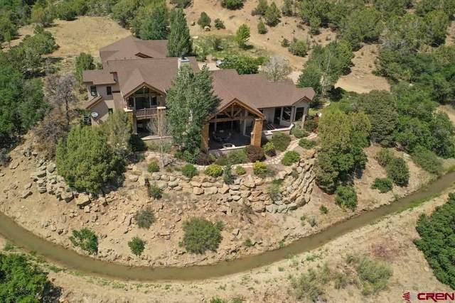 38721 Highway 160, Bayfield, CO 81122 (MLS #783704) :: Berkshire Hathaway HomeServices Western Colorado Properties