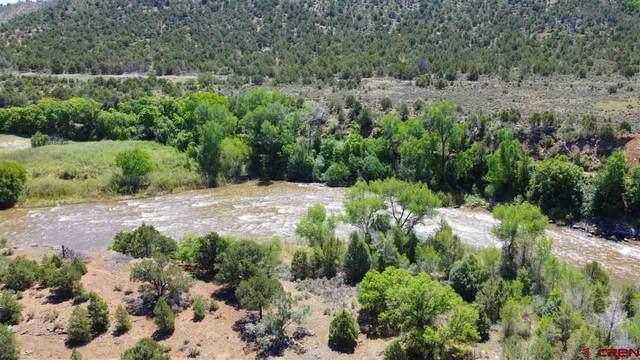 646 Kiva Road, Durango, CO 81303 (MLS #783738) :: Durango Mountain Realty