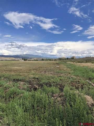 202 Kinikin Road, Montrose, CO 81403 (MLS #783823) :: Dawn Howe Group   Keller Williams Colorado West Realty
