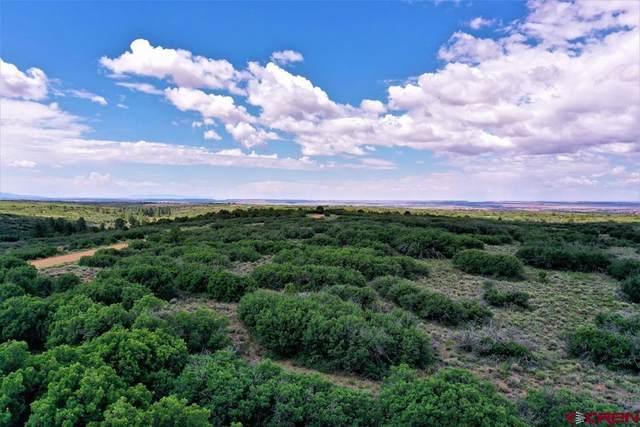 TBD Road C, Dove Creek, CO 81324 (MLS #783901) :: The Howe Group   Keller Williams Colorado West Realty