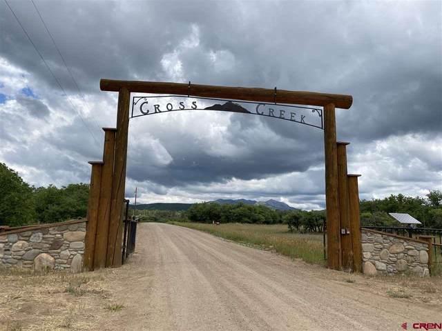 TBD Cross Creek Road, Hesperus, CO 81326 (MLS #783922) :: Durango Mountain Realty