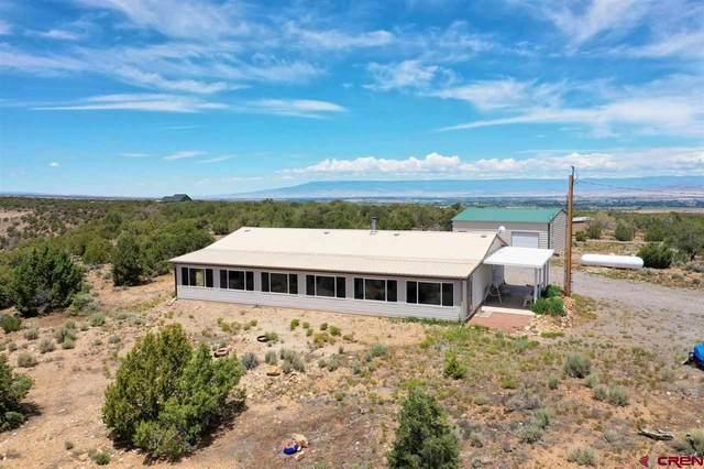 18891 Paradox Trail, Montrose, CO 81403 (MLS #783938) :: Dawn Howe Group   Keller Williams Colorado West Realty