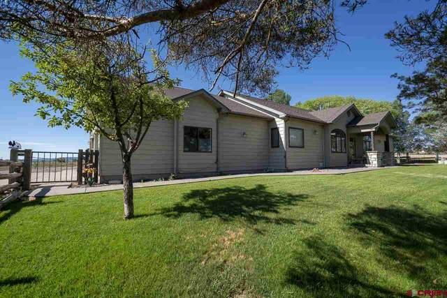 250 Heartland Acres, Durango, CO 81303 (MLS #784022) :: The Howe Group | Keller Williams Colorado West Realty