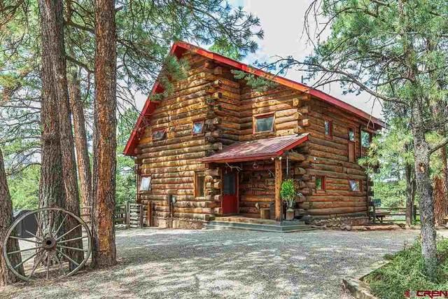 190 Lower Road, Durango, CO 81303 (MLS #784033) :: Durango Mountain Realty
