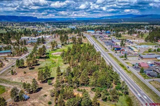 368 Harman Park, Pagosa Springs, CO 81147 (MLS #784118) :: The Howe Group   Keller Williams Colorado West Realty