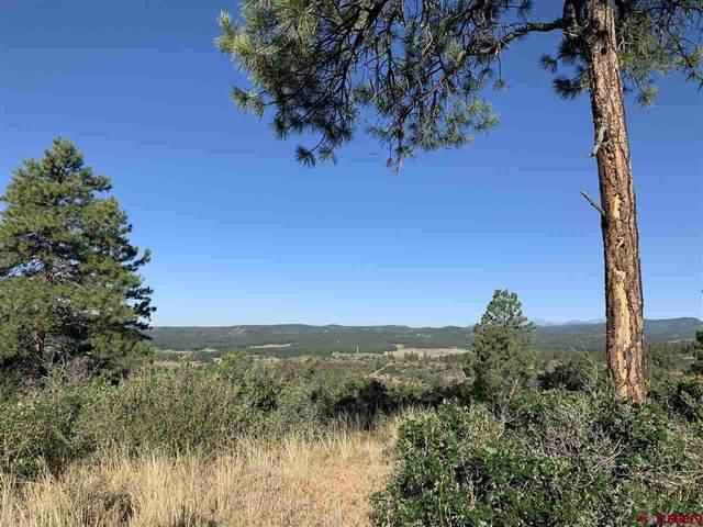 1619 Beaver Creek Ranch Drive, Bayfield, CO 81122 (MLS #784137) :: The Howe Group   Keller Williams Colorado West Realty