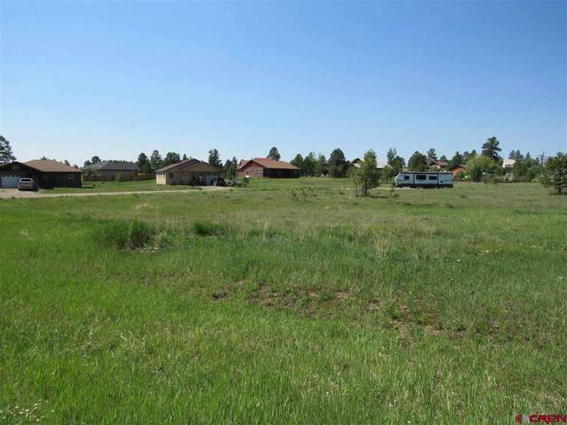 17 Durango Court, Pagosa Springs, CO 81147 (MLS #784169) :: The Howe Group | Keller Williams Colorado West Realty