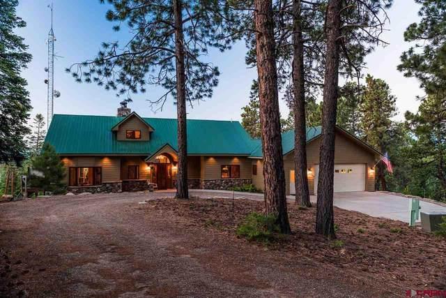 1744 Silver Mesa Driveway, Durango, CO 81301 (MLS #784212) :: Durango Mountain Realty